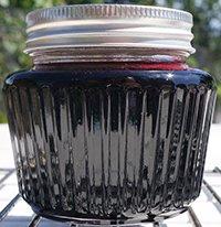 Elderberry Mush Recipe